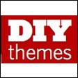 DIYthemes Coupon