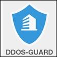 DDoS-GUARD.NET Coupon